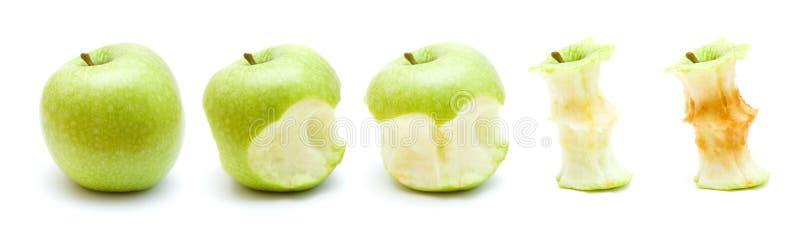 Πράσινο μήλο που τρώει την πρόοδο στοκ εικόνες