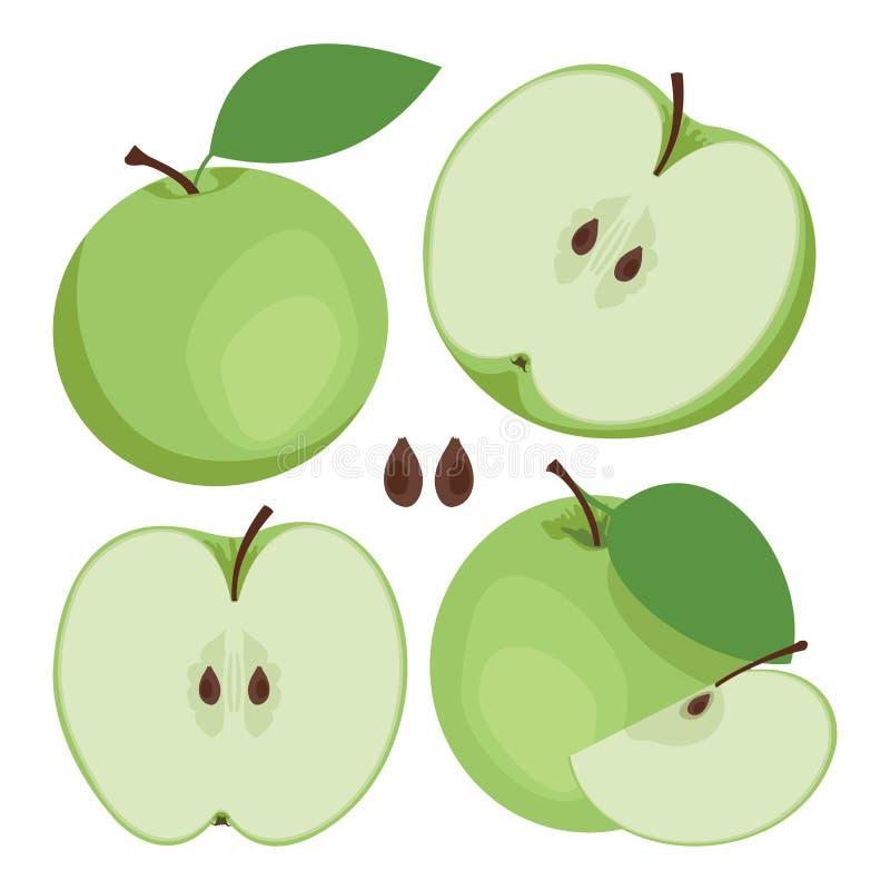 πράσινο μήλου Συλλογή ολόκληρων και των τεμαχισμένων πράσινων φρούτων μήλων απεικόνιση αποθεμάτων