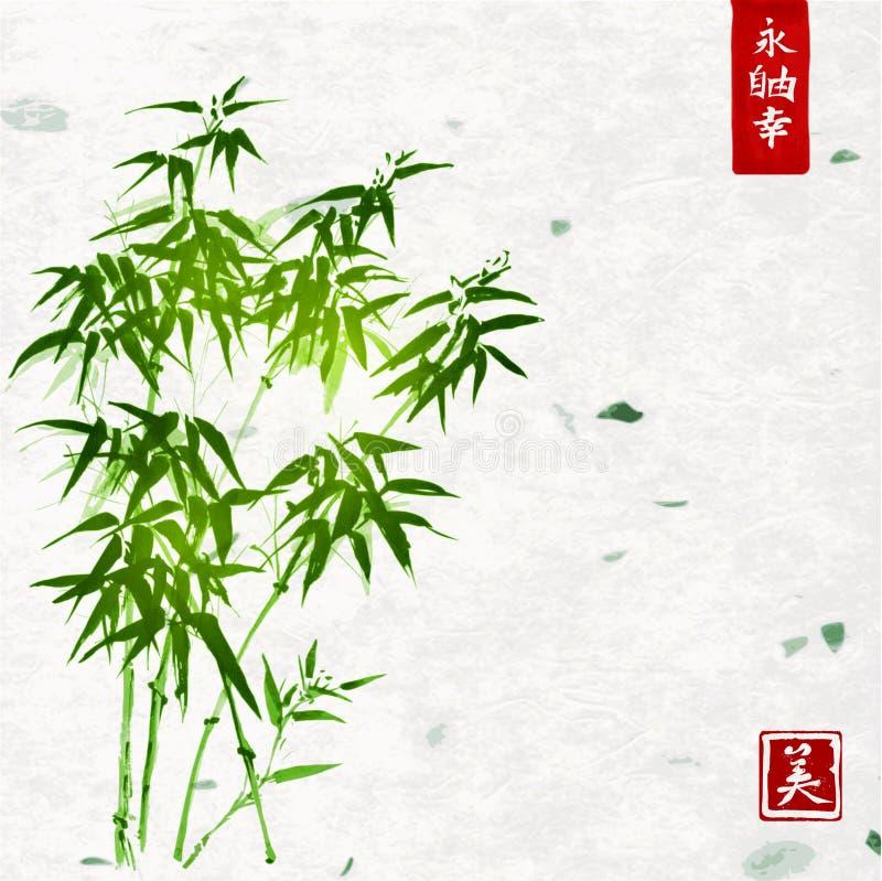 Πράσινο μπαμπού στο χειροποίητο υπόβαθρο εγγράφου ρυζιού ελεύθερη απεικόνιση δικαιώματος