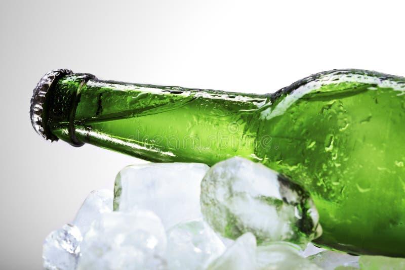 πράσινο να βρεθεί πάγου μπ&omi στοκ φωτογραφίες με δικαίωμα ελεύθερης χρήσης