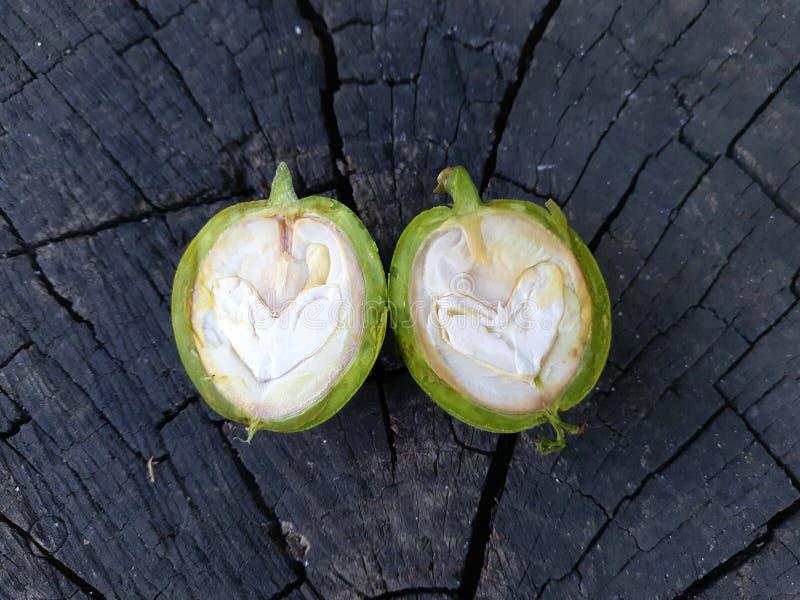 Πράσινο ξύλο καρυδιάς που κόβεται σε δύο μισά στοκ φωτογραφίες