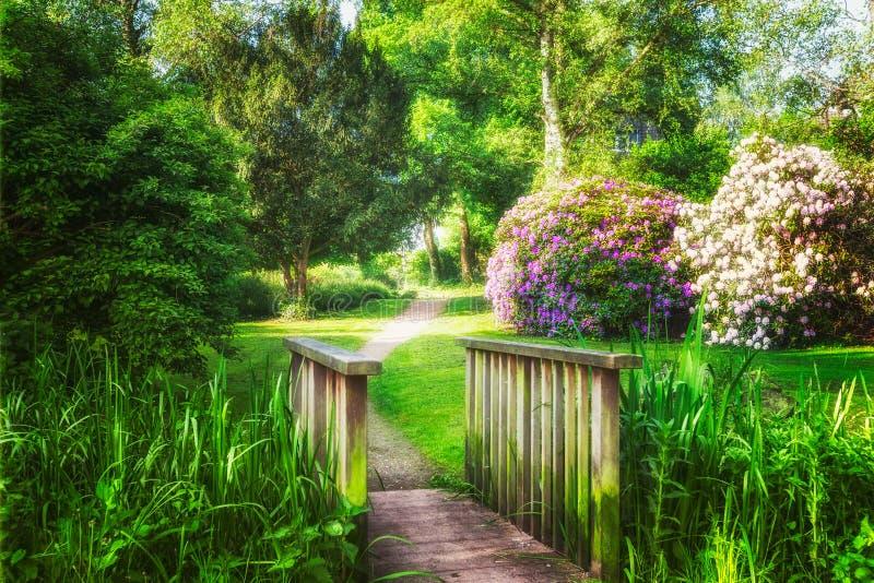 Πράσινο πάρκο άνοιξη στοκ φωτογραφίες με δικαίωμα ελεύθερης χρήσης