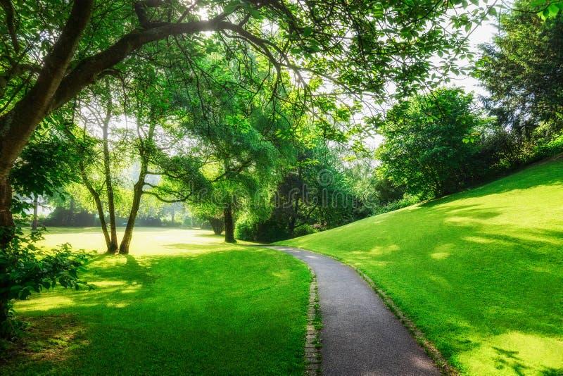 Πράσινο πάρκο άνοιξη στοκ φωτογραφίες