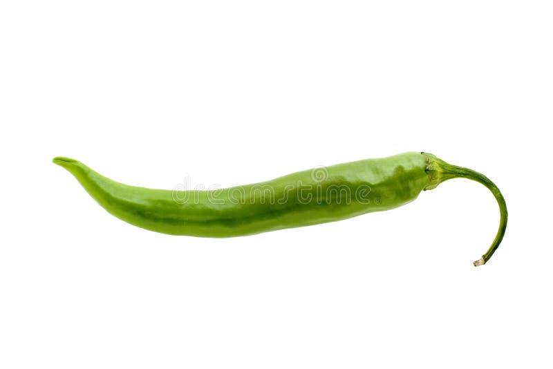 πράσινο πιπέρι τσίλι στοκ εικόνες με δικαίωμα ελεύθερης χρήσης