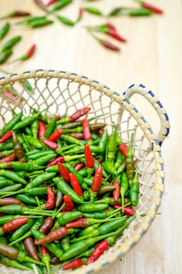 Πράσινο πιπέρι τσίλι στοκ εικόνες