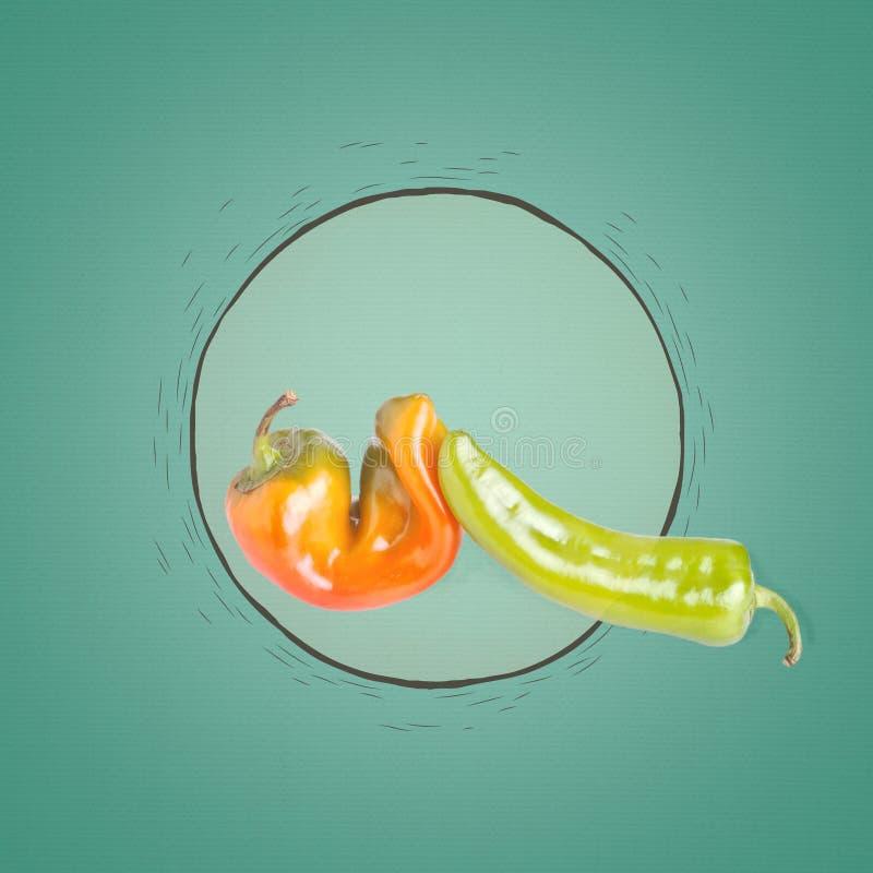 πράσινο πορτοκαλί πιπέρι στοκ εικόνες