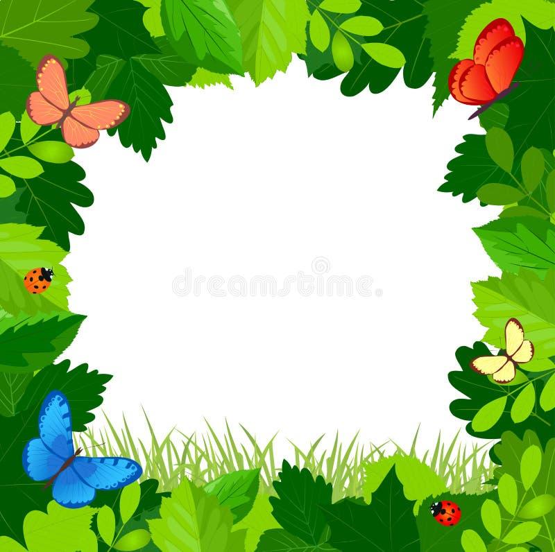 Πράσινο πλαίσιο φύλλων με τις πεταλούδες διανυσματική απεικόνιση
