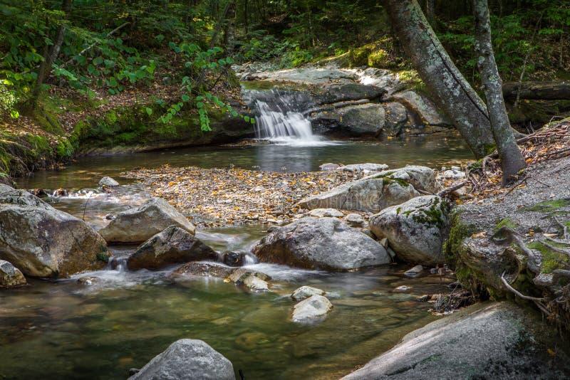 Πράσινο ρεύμα νερού βουνών στοκ εικόνες με δικαίωμα ελεύθερης χρήσης