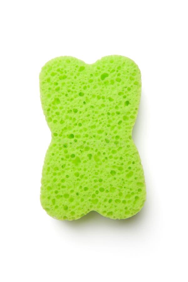πράσινο σφουγγάρι στοκ εικόνα με δικαίωμα ελεύθερης χρήσης