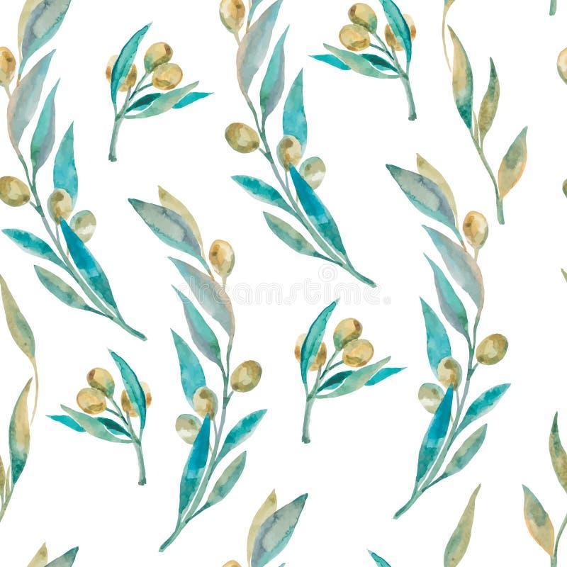 Πράσινο σχέδιο ελιών Watercolor Ελιά branche διανυσματική απεικόνιση