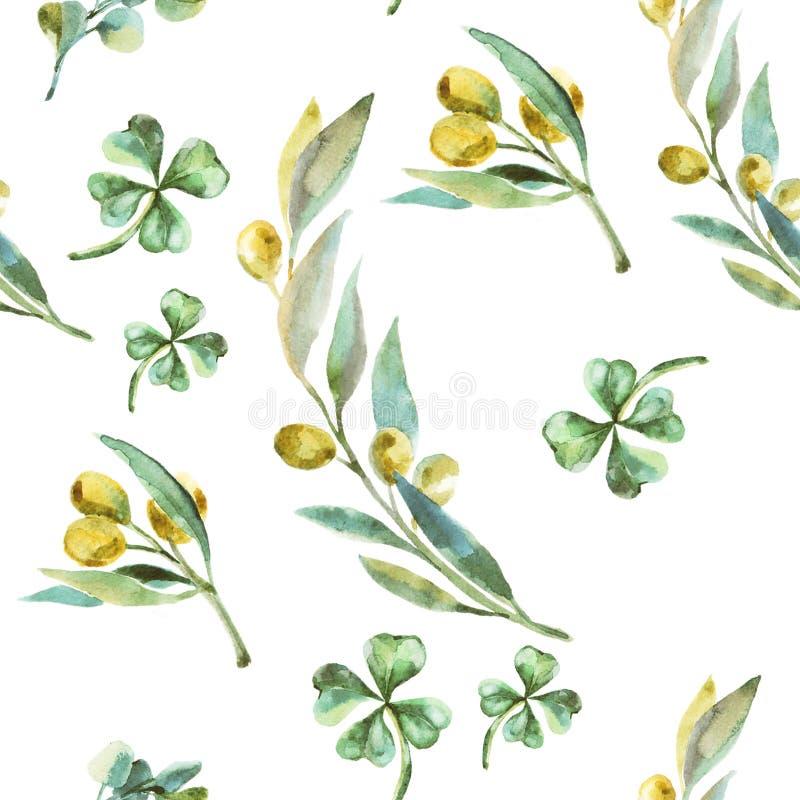 Πράσινο σχέδιο ελιών Watercolor Κλαδί ελιάς διανυσματική απεικόνιση