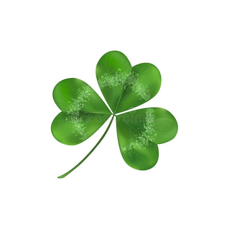 Πράσινο σύμβολο φύλλων τριφυλλιών της τύχης Απομονωμένος στην άσπρη απεικόνιση Διακόσμηση τριφυλλιού ως σύμβολο ιρλανδικού πολιτι απεικόνιση αποθεμάτων