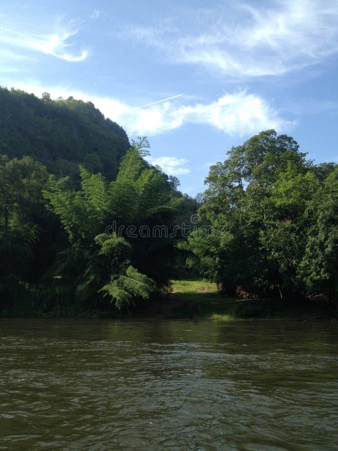 Πράσινο σύνολο τομέων στην όχθη ποταμού στοκ φωτογραφία με δικαίωμα ελεύθερης χρήσης