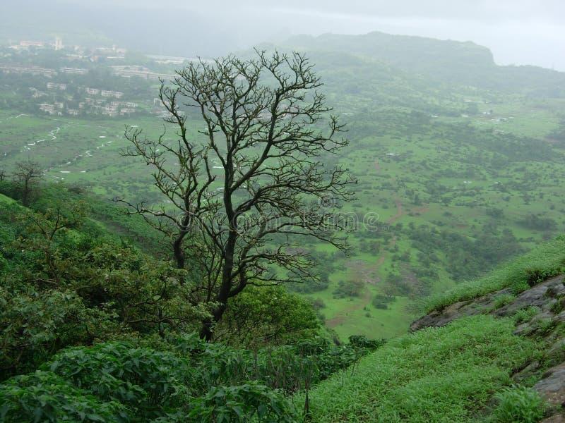 πράσινο τοπίο ορεινό στοκ φωτογραφία