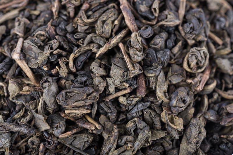 Πράσινο τσάι πυρίτιδας στοκ φωτογραφία με δικαίωμα ελεύθερης χρήσης