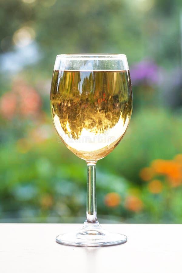 Πράσινο υπόβαθρο κρασιού γυαλιού άσπρο στοκ εικόνες