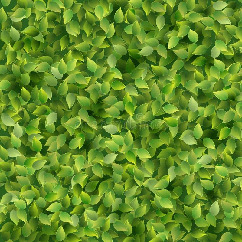 Πράσινο υπόβαθρο προτύπων σύστασης σχεδίων φύλλων 10 eps διανυσματική απεικόνιση