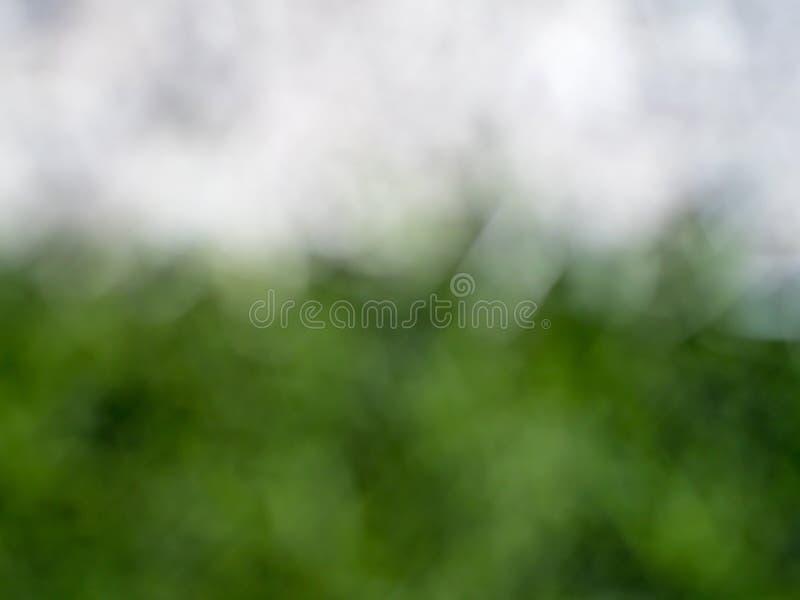 πράσινο υπόβαθρο φύλλων στην εστίαση θαμπάδων στοκ εικόνες