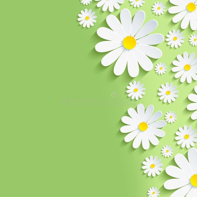 Πράσινο υπόβαθρο φύσης άνοιξη με τα άσπρα chamomiles απεικόνιση αποθεμάτων