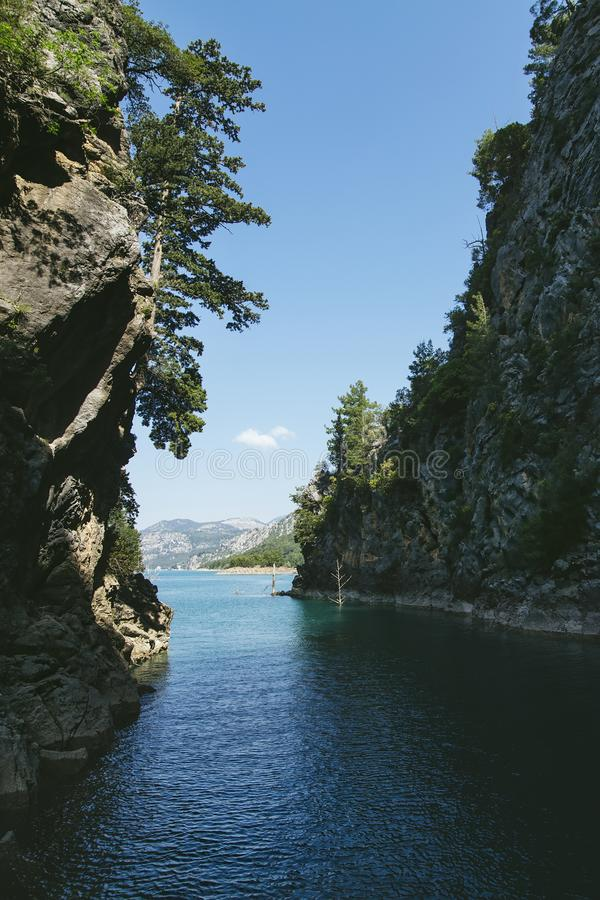 Πράσινο φαράγγι, το σαφές νερό στο ρεύμα μεταξύ των βράχων και s στοκ φωτογραφίες με δικαίωμα ελεύθερης χρήσης