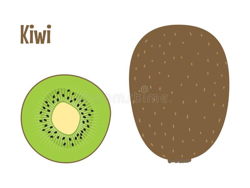 Πράσινο φρέσκο σύνολο φρούτων ακτινίδιων και μια φέτα διάνυσμα στοκ φωτογραφία με δικαίωμα ελεύθερης χρήσης