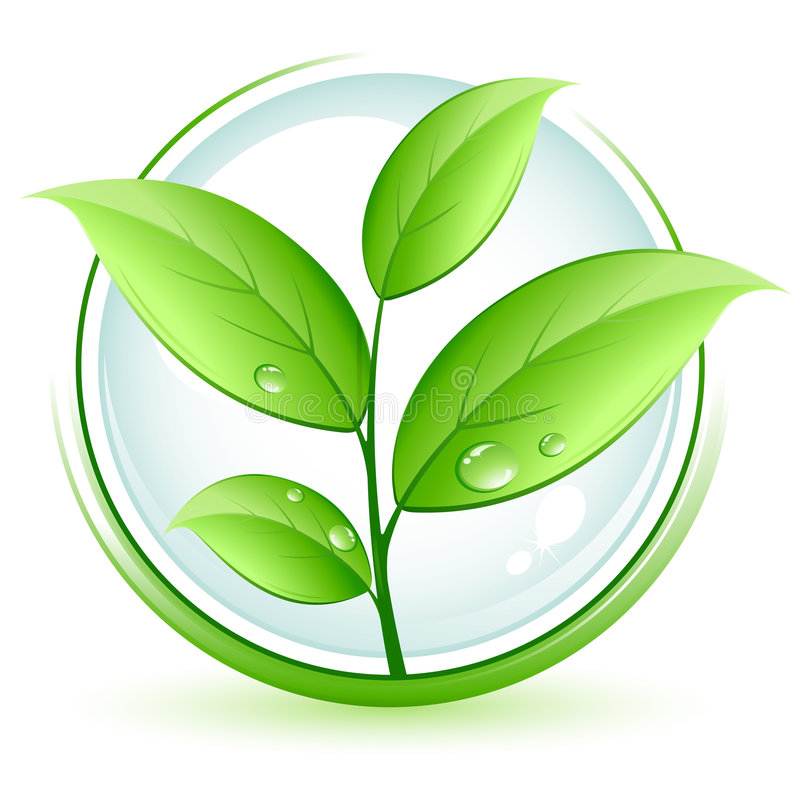 πράσινο φυτό διανυσματική απεικόνιση