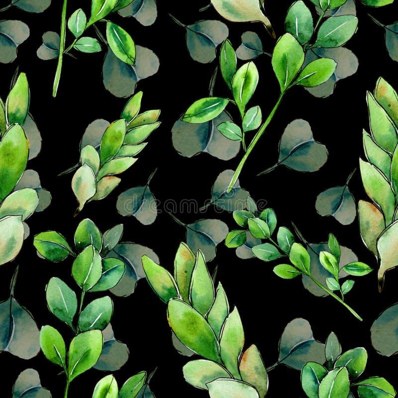 Πράσινο φύλλο πυξαριού Floral φύλλωμα βοτανικών κήπων φυτών φύλλων απεικόνιση αποθεμάτων