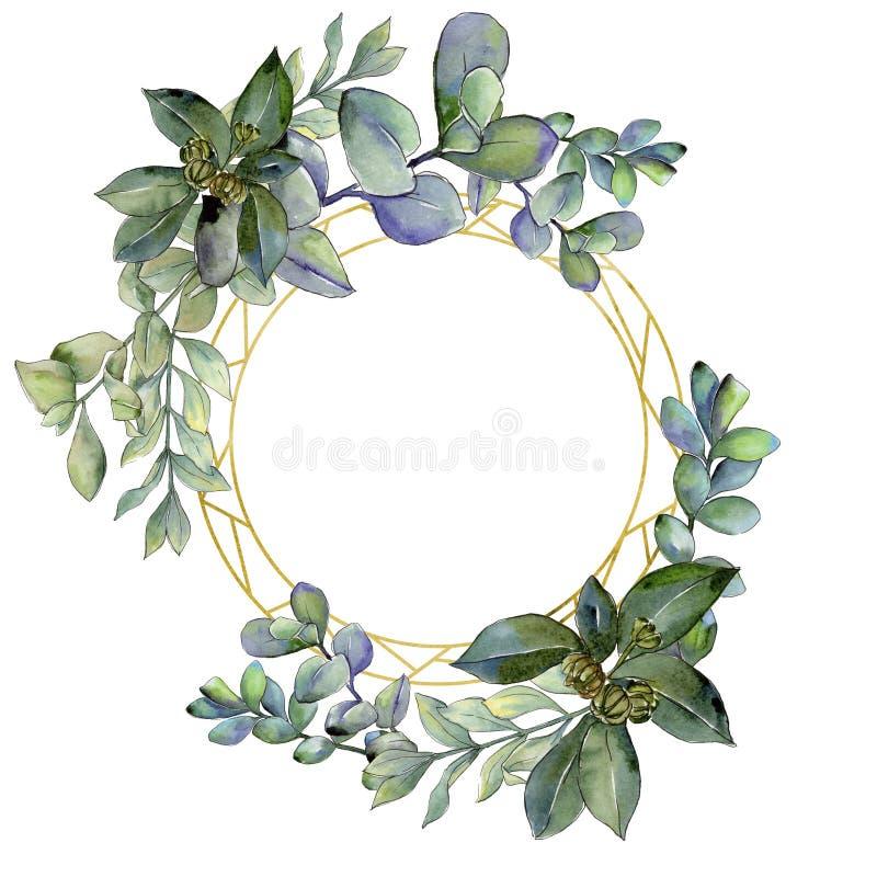 Πράσινο φύλλο πυξαριού Floral φύλλωμα βοτανικών κήπων φυτών φύλλων Τετράγωνο διακοσμήσεων συνόρων πλαισίων διανυσματική απεικόνιση