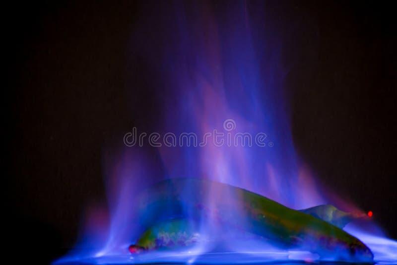 Πράσινο jalapeno στην μπλε πυρκαγιά στοκ εικόνες