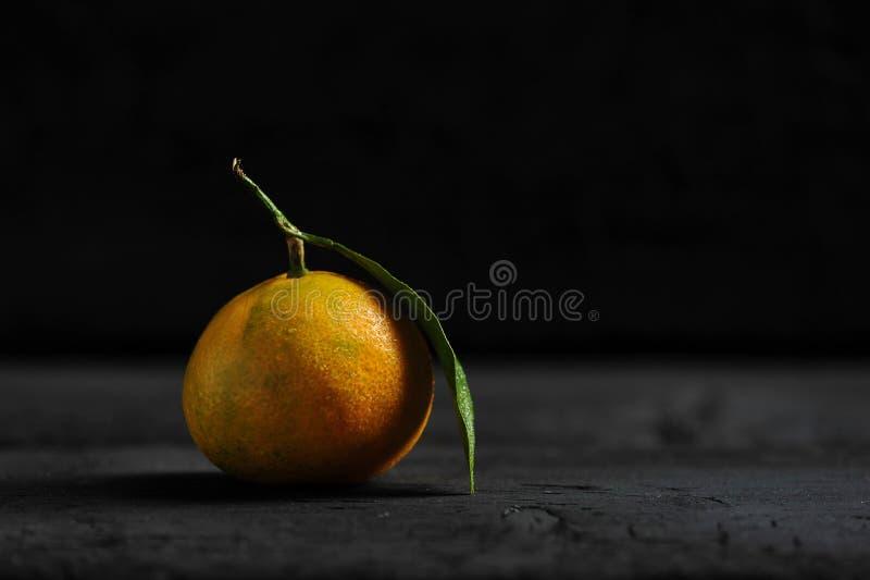 πράσινο tangerine φύλλων στοκ φωτογραφίες