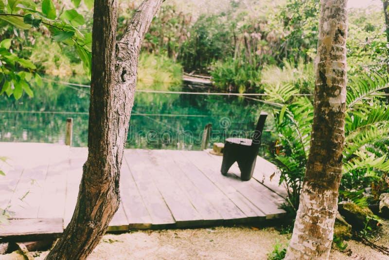 Πράσινο tulum ζουγκλών ειρήνης φύσης στοκ εικόνα με δικαίωμα ελεύθερης χρήσης