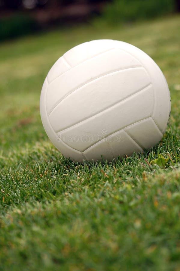 πράσινο volley στοκ φωτογραφία με δικαίωμα ελεύθερης χρήσης