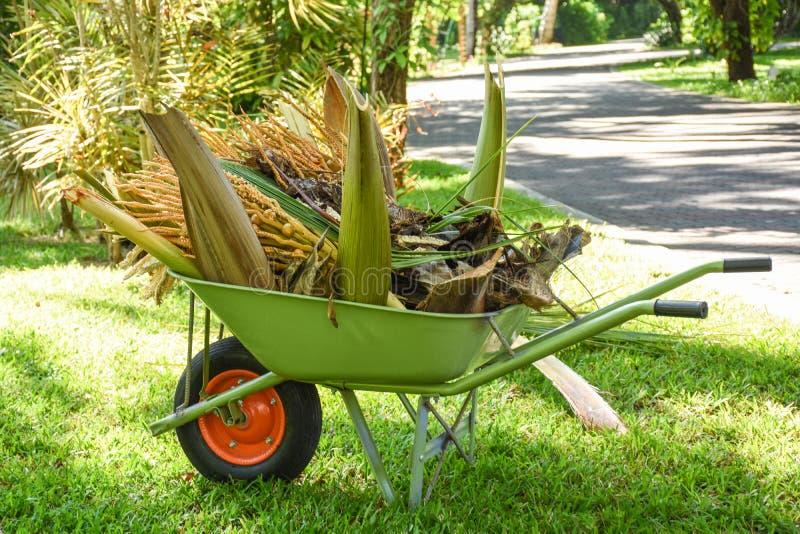 Πράσινο wheelbarrow σύνολο των εγκαταστάσεων στον κήπο στοκ φωτογραφία με δικαίωμα ελεύθερης χρήσης