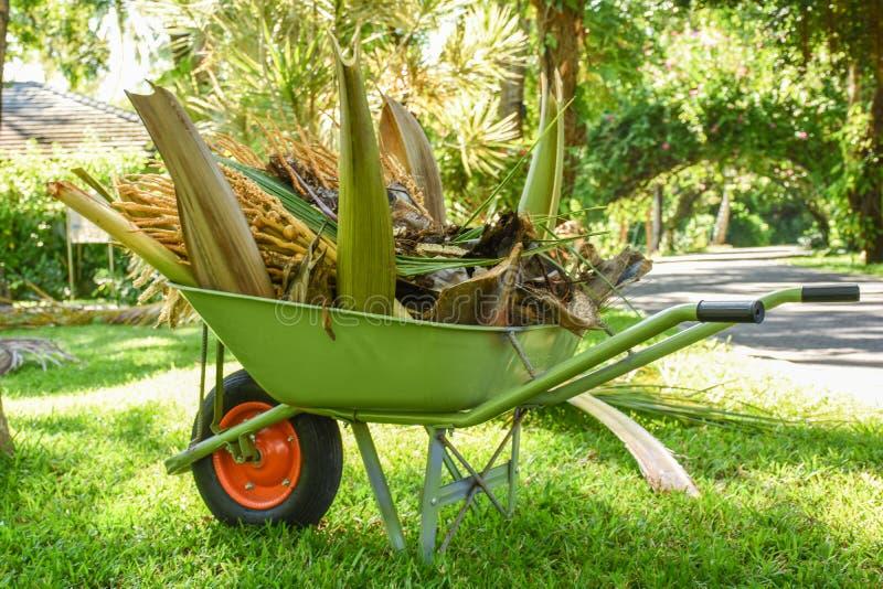 Πράσινο wheelbarrow σύνολο των κλάδων φοινίκων ` s στον κήπο στοκ φωτογραφία με δικαίωμα ελεύθερης χρήσης