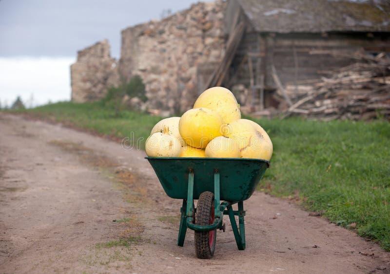 Πράσινο wheelbarrow σύνολο των κολοκυθών στοκ εικόνες με δικαίωμα ελεύθερης χρήσης