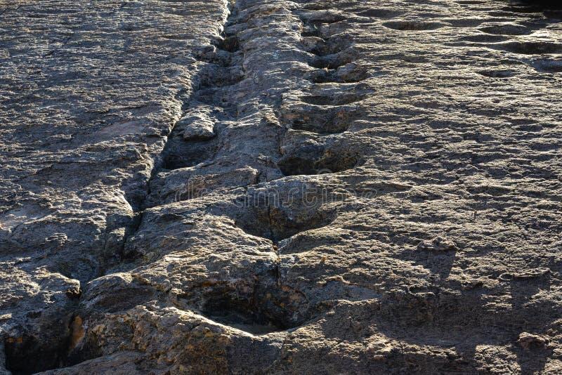 Πραγματικά ίχνη δεινοσαύρων, εθνικό πάρκο Torotoro, Βολιβία στοκ εικόνα