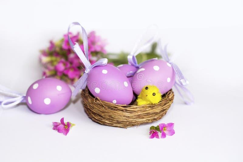 Πραγματική φωλιά με τα πορφυρά αυγά Πάσχας στοκ φωτογραφία με δικαίωμα ελεύθερης χρήσης