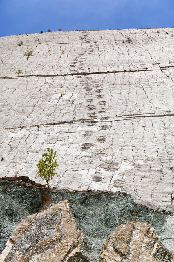Πραγματικό ίχνος δεινοσαύρων που αποτυπώνεται στο βράχο Πάρκο Nacional σε sucre, Βολιβία στοκ φωτογραφία