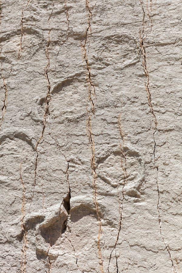 Πραγματικό ίχνος δεινοσαύρων που αποτυπώνεται στο βράχο Πάρκο Nacional σε sucre, Βολιβία στοκ εικόνα