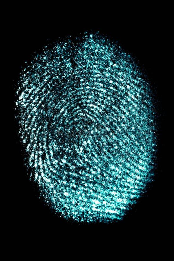 Πραγματικό νέο-μπλε δακτυλικό αποτύπωμα στο μαύρο υπόβαθρο, κάθετη ει στοκ φωτογραφία με δικαίωμα ελεύθερης χρήσης