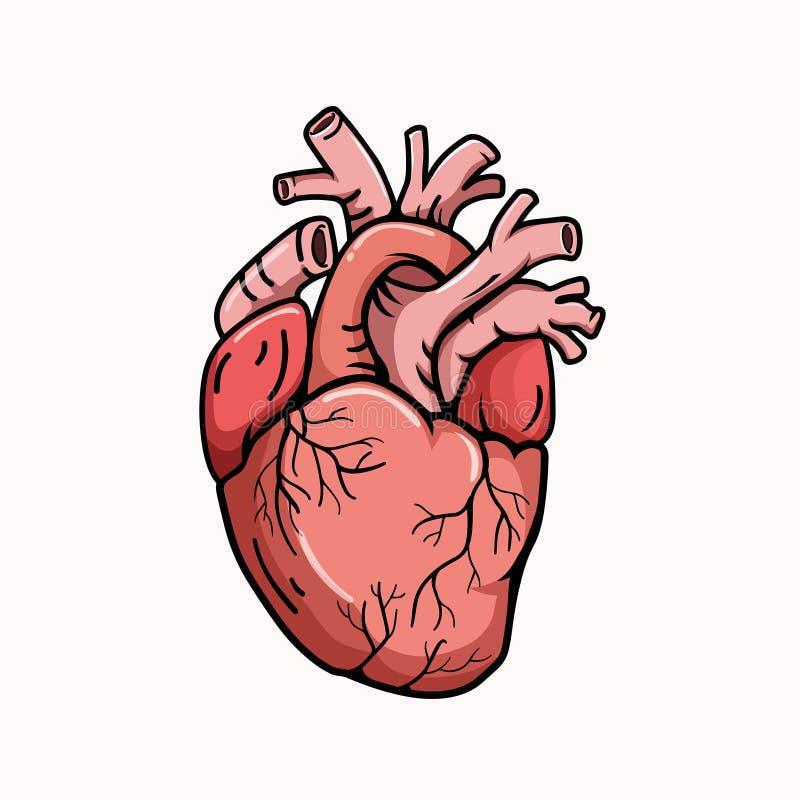 Πραγματικό ύφος απεικόνισης μορφής καρδιών ελεύθερη απεικόνιση δικαιώματος