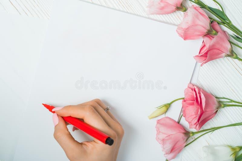 Πρακτικές σπουδαστών καλλιγράφων στο γράψιμο της εγγραφής με τον κόκκινο δείκτη στον καμβά Δημιουργικός καλλιτέχνης freelancer πο στοκ φωτογραφίες με δικαίωμα ελεύθερης χρήσης