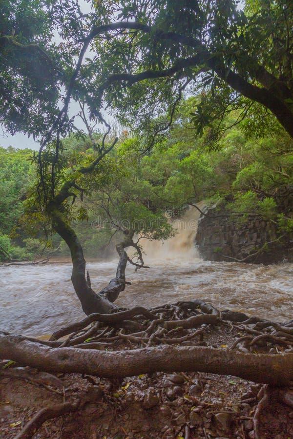 Πρησμένοι ποταμοί και αναβλύζω νερά σε Maui στοκ εικόνα με δικαίωμα ελεύθερης χρήσης