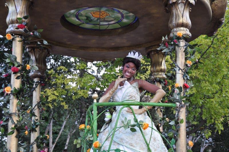 πριγκήπισσα tiana στοκ εικόνες με δικαίωμα ελεύθερης χρήσης