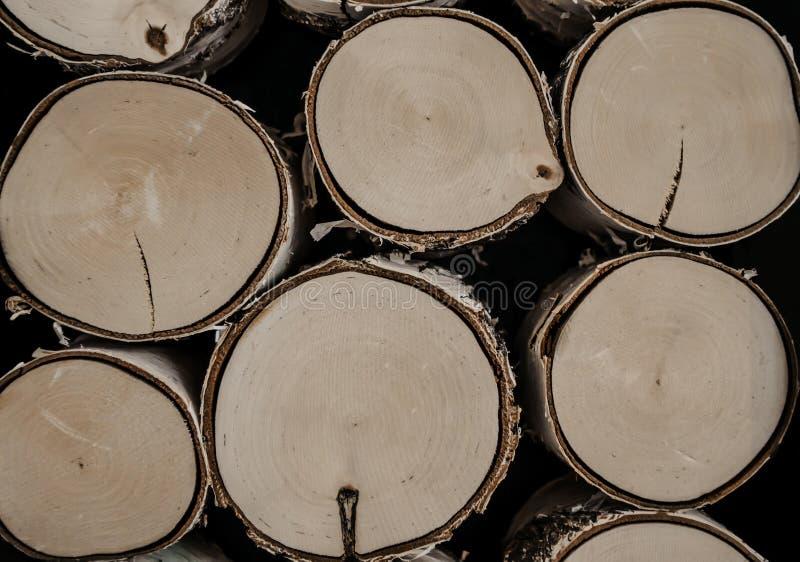 Πριονισμένα κούτσουρα, κορμοί σημύδων Πριονισμένο και συσσωρευμένο καυσόξυλο και κούτσουρα στοκ φωτογραφία με δικαίωμα ελεύθερης χρήσης