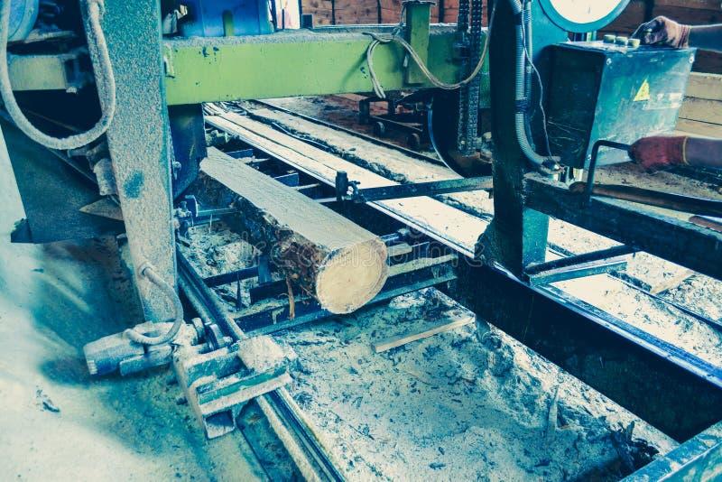 πριονιστήριο Η διαδικασία στη μηχανή συνδέεται τα πριόνια μηχανών πριονιστηρίων το τ στοκ εικόνες με δικαίωμα ελεύθερης χρήσης