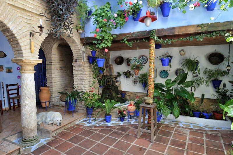 Προαύλιο που διακοσμείται με τα λουλούδια, Κόρδοβα, Ισπανία στοκ φωτογραφία με δικαίωμα ελεύθερης χρήσης