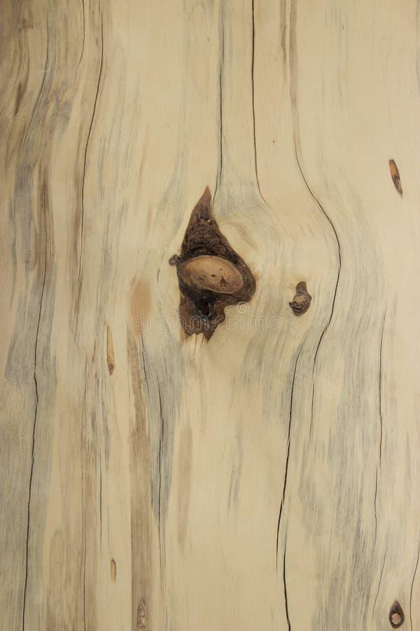 Προγραμματισμένη ξυλεία με τις ατέλειες στοκ φωτογραφία με δικαίωμα ελεύθερης χρήσης