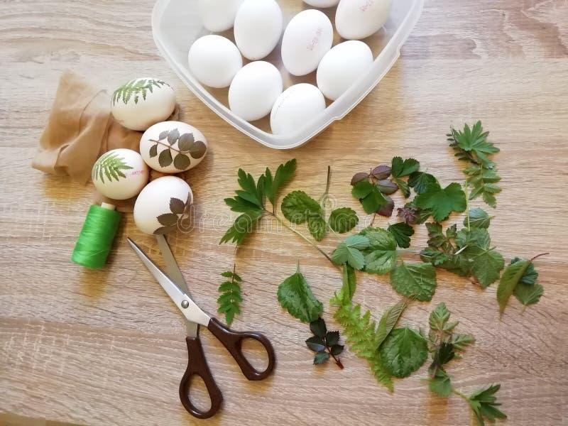 Προετοιμασία των αυγών για το χρωματισμό στη φλούδα κρεμμυδιών με τα χορτάρια στοκ φωτογραφία