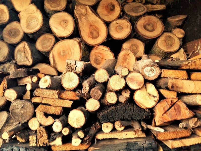 Προετοιμασμένος για το χειμώνα τα κούτσουρα από τα διαφορετικά είδη δέντρων για τη θέρμανση στοκ εικόνες